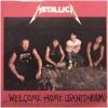 """Welcome Home (Sanitarium)"" cover"